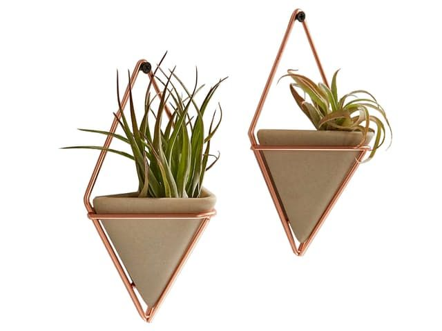 10 Easy Pieces: Show Off Your Plants Like a Pro — Apartment Therapy Marketplace | Apartment Therapy