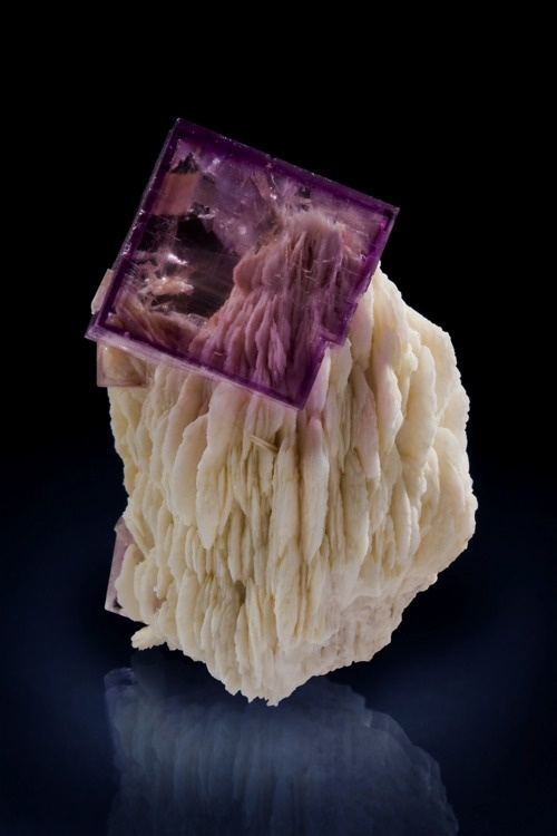 Fluorite: Geology Rocks, Berb Mine, Purple Fluorit, Gems Minerals Crystals Rocks, Barit Minerals, Mine Area, Gems Stones, Gemstones Rocks Minerals, Crystals Minerals Gems Fossil