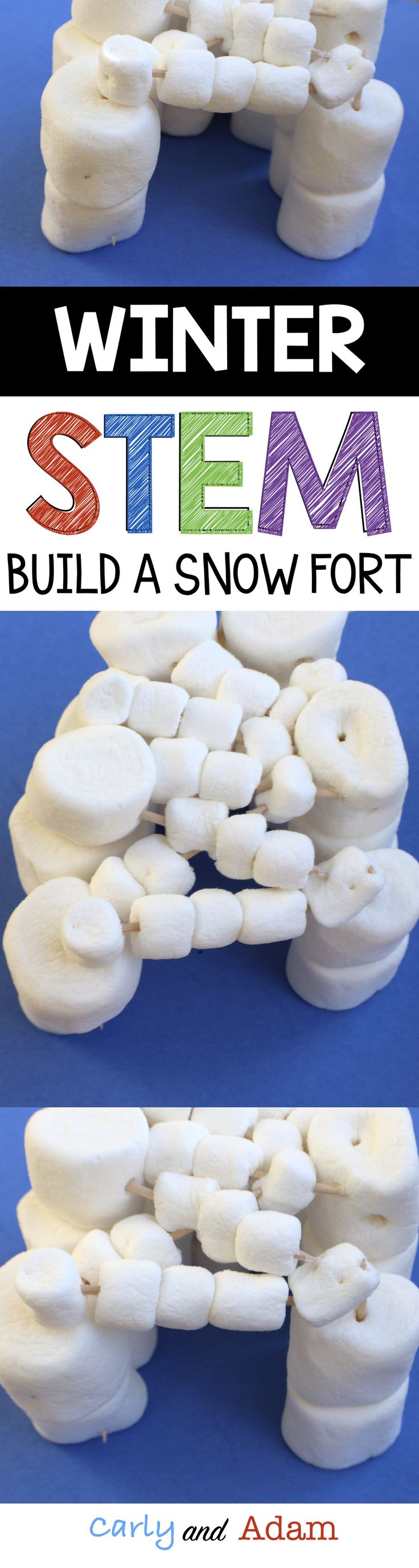 For this winter themed STEM activity students build a snow fort out of marshmallows and toothpicks.