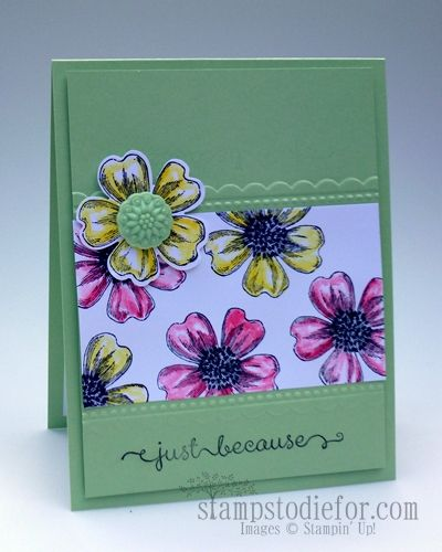 Card inspired by Michelle Last, I used the Flower Shop Stampin Up Stamp Set.  http://www.stampstodiefor.com/patstamps/2013/07/stampin-up-flower-shop-pansy-punch-bundle-up.html