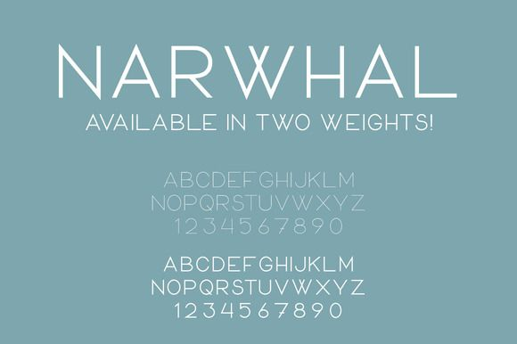 Narwhal ~~ Narwhal is a modern, friendly typeface that is perfect for creating a unique but familiar look. This all uppercase sans serif typeface is available in two weights, bold and regular. Weve also included a CSS file and the necessary font formats to add this