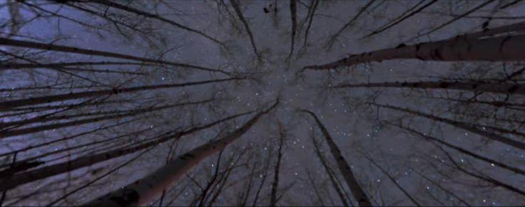 The Devil Wears Prada 'Alien' Music Video Published - http://www.tunescope.com/news/the-devil-wears-prada-alien-music-video-published/