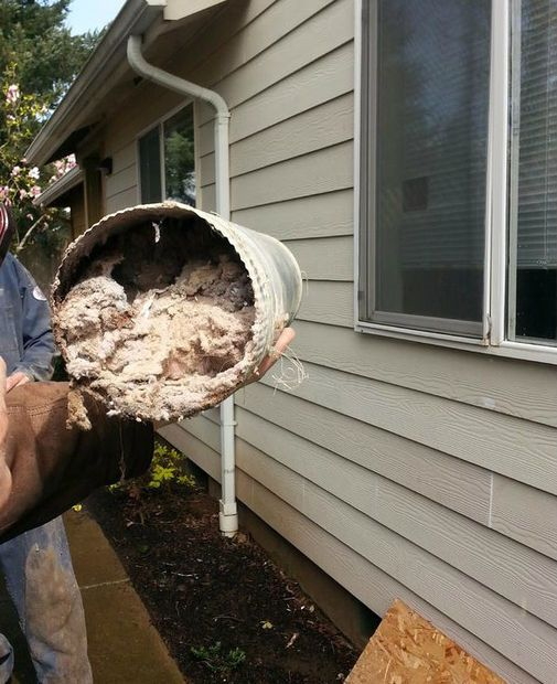 How to maintain the flow of air in your dryer vent — do this regularly! It can prevent a fire.
