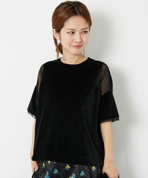 Velvet with sheer sleeves