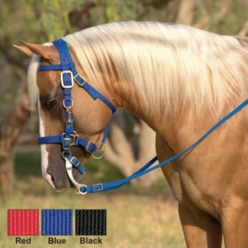 17 Best Images About Horse Tack Amp Equipment On Pinterest