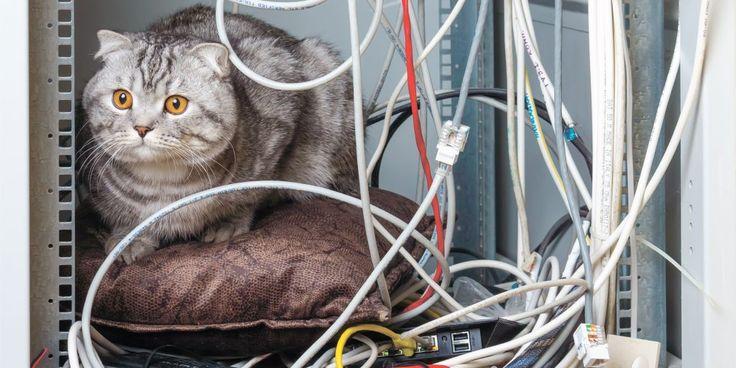 К сожалению, беспроводные технологии ещё не стали распространённым явлением в офисах и домах. А значит, в ближайшее время куча раздражающих проводов на столе никуда не денется. Предлагаем вам несколько советов, которые помогут избавиться от беспорядка и спрятать кабели от посторонних глаз.