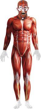 Smiffy's Anatomy Man Costume Costume carnevale uomo: confronta i prezzi e compara le offerte su idealo.it