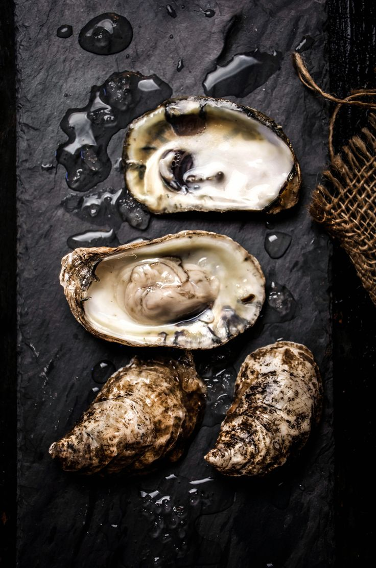 Oysters on the Half Shell from Up Close & Tasty