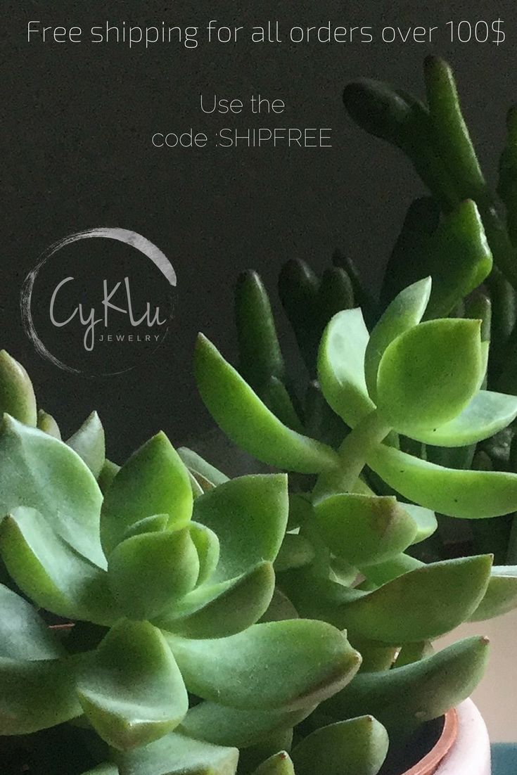 Free shipping coupon code for Cyklu jewelry. Botanical and Nature inspired jewelry