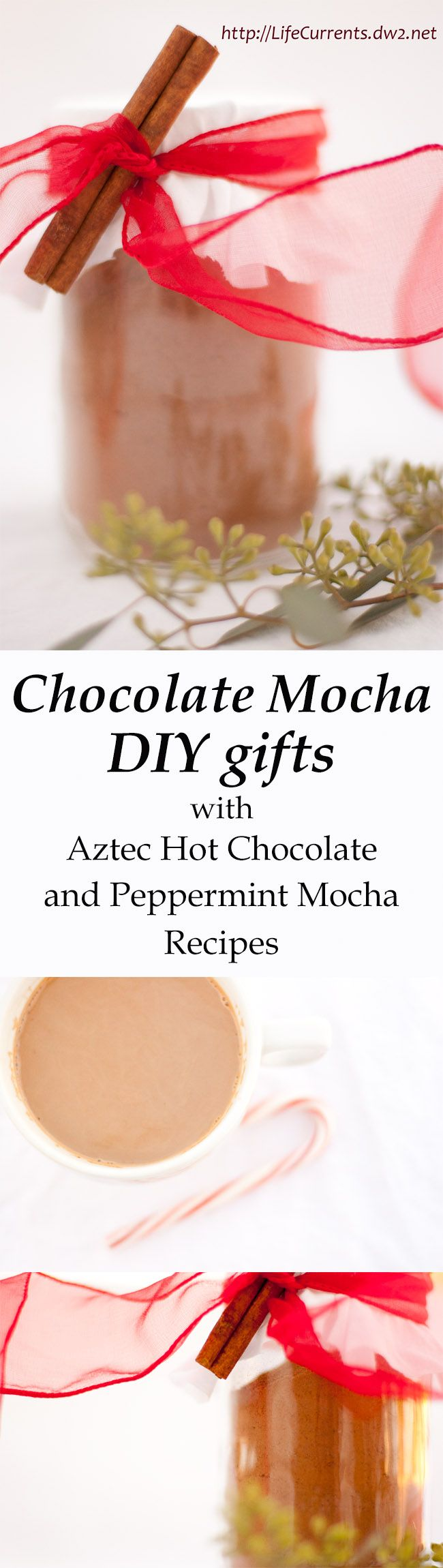 Chocolate Mocha or DIY gifts from Life Currents with recipes for Aztec Hot Chocolate Mix and Peppermint Mocha. You'll love giving these as much as your friends will love getting them!