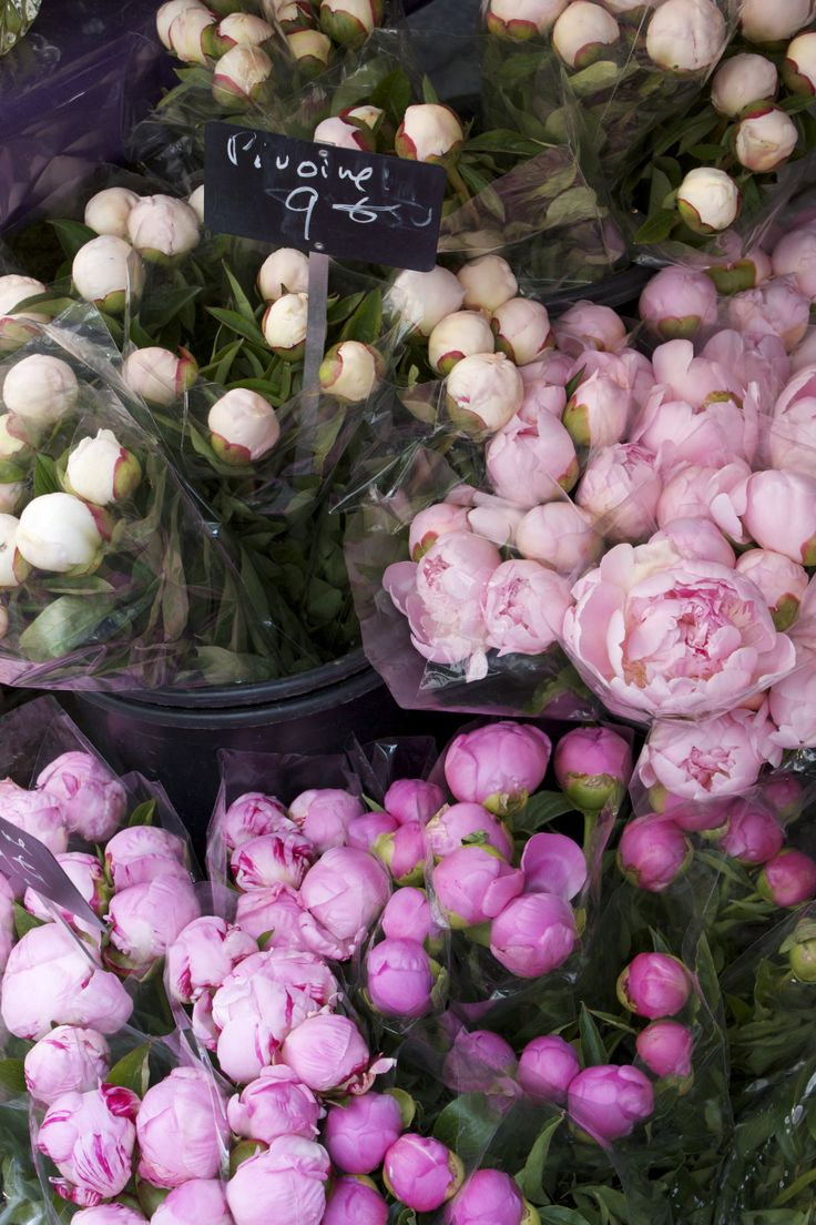 Peonies on Rue de Buci, Paris.
