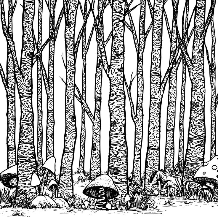 511 best tree art - coloring pages images on Pinterest   Coloring ...