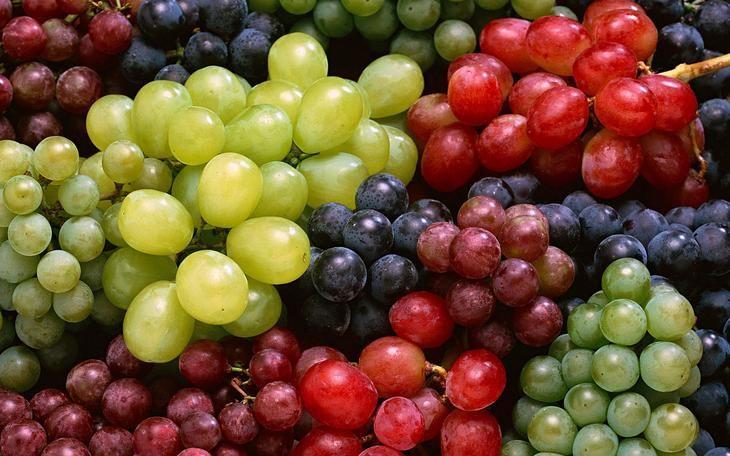 vinograd_sort_raznovidnost_sladkiy_frukty_70303_3840x2400
