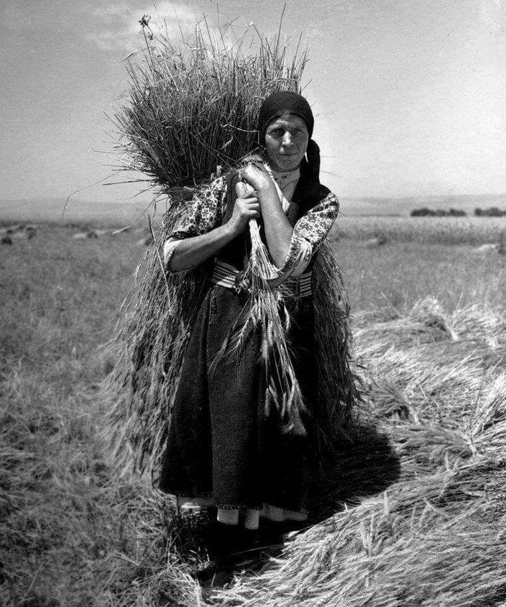 Harvest 1927, BG