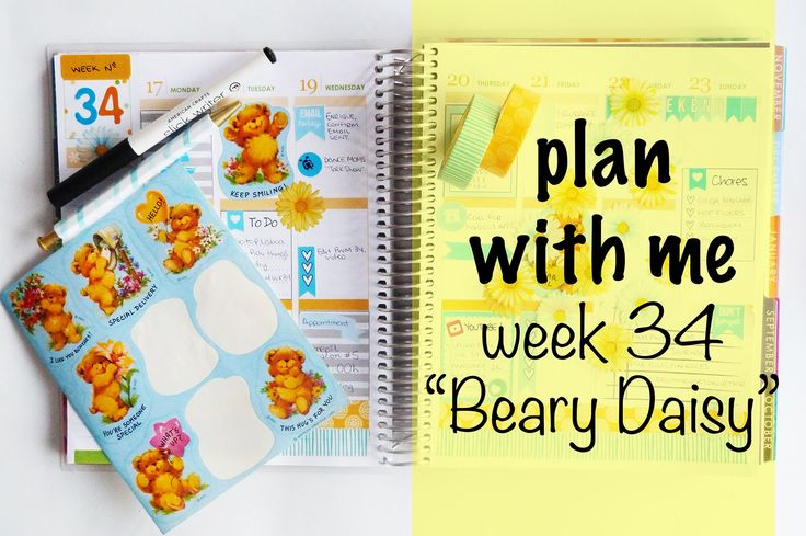 """Plan With Me - Week 34 """"Beary Daisy"""""""