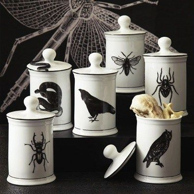 the porcelain natural curiosities jars feature some ominous animals say that three times fast