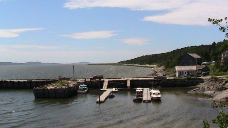 le tout petit port de l'Île Verte, été 2011