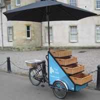 // trader bike - umbrella, stair-stepped display for sizes/styles.