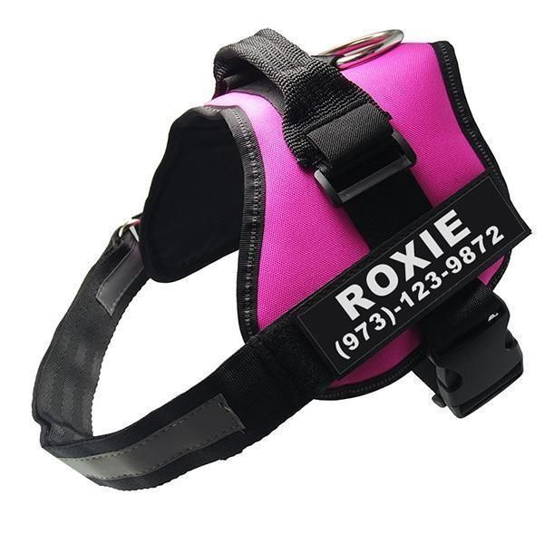 Lifetime Warranty Personalized No Pull Dog Harness Free Shipping