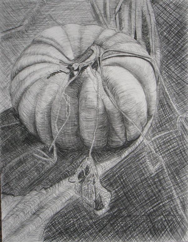 Contour Line Drawing Pumpkin : Best images about cross contour drawing on pinterest