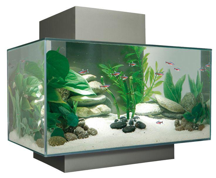 Fluval Edge Aquarium Set