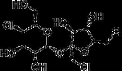 Is Sucralose Dangerous?