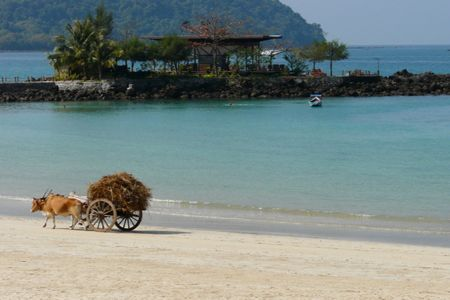 Ngapali Beach - The most beatiful beach in Myanmar