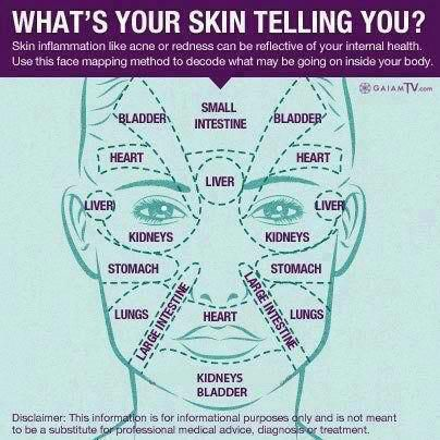 Many folks are familiar with reflexology and the pressure points on hands and feet that correspond to various organs of the body. Here is a chart for the face .. if you tend to get acne or skin eruptions in a certain area frequently, it might be worth investigating whether that organ system needs nutritional assistance or detoxification. .