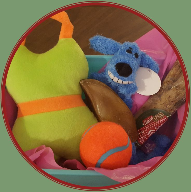 Kai Krates offers monthly subscription boxes of dog toys and treats at a reasonable price! Kaikrates.com