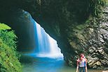 Springbrook National Park Discovery Full-Day Bushwalk including Glow Worm Tour, Brisbane, 4WD, ATV ...