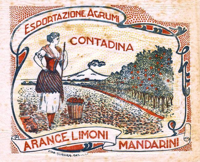 Citrus fruits paper wrap, Sicily.