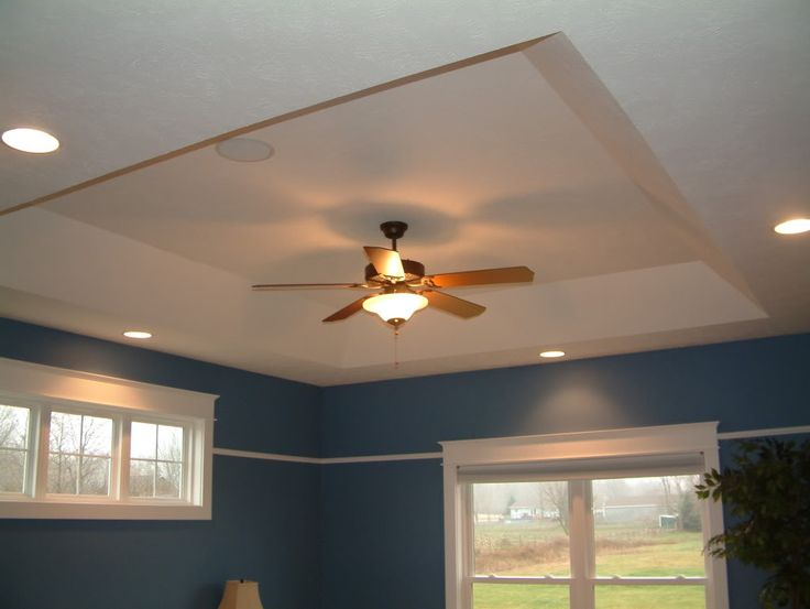 tray ceiling rope lighting alluring saltwater. dscf00021jpg tray ceiling rope lighting alluring saltwater h