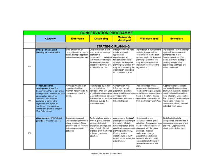 Project Plan Brand Communications  Business  Marketing Analysis