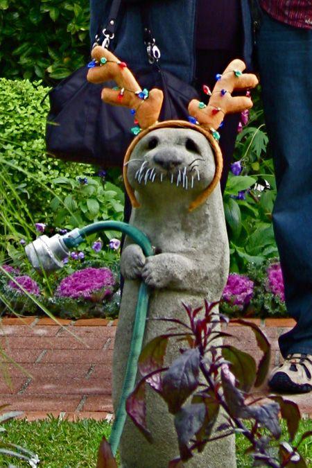 I LOVE this hose holding otter...minus the antler ears.  Where do I find one??? #otter #hoseholder