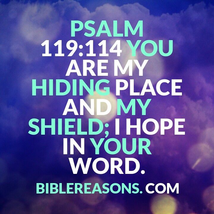 15 Encouraging Bible Quotes About God Being Our Hiding Place! Psalm 119:114 Check This Out!
