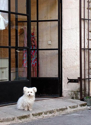 Little Dog, St. Remy-de-Provence. Black steel French doors opening onto stone step.
