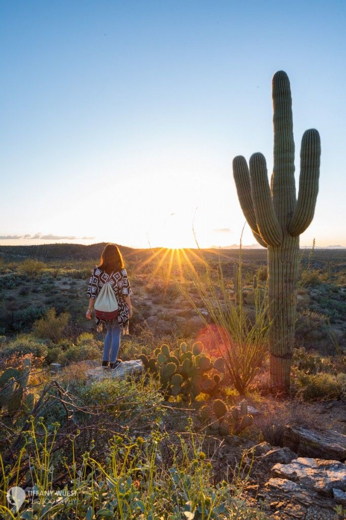 Want less crowds and more fun? Winter is my favorite season to visit national parks in the United States, for example beautiful Saguaro National Park! Click for the top 10 parks to visit in winter.