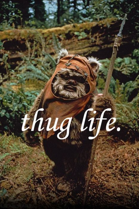 Happy Friday, MFs.: Ewok, Thuglife, Thug Life, Awesome, Stars War, Giggles, Funny, Movie, Starwars