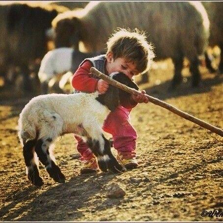 Kurdish child very cute
