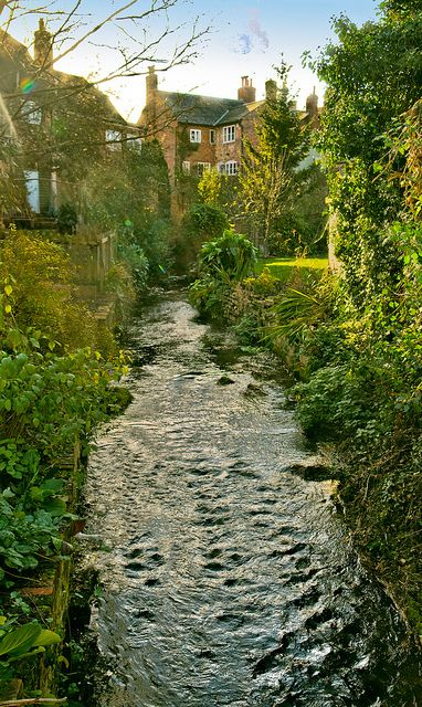 The river Alre runs between houses in the town of Alresford in Hampshire, England
