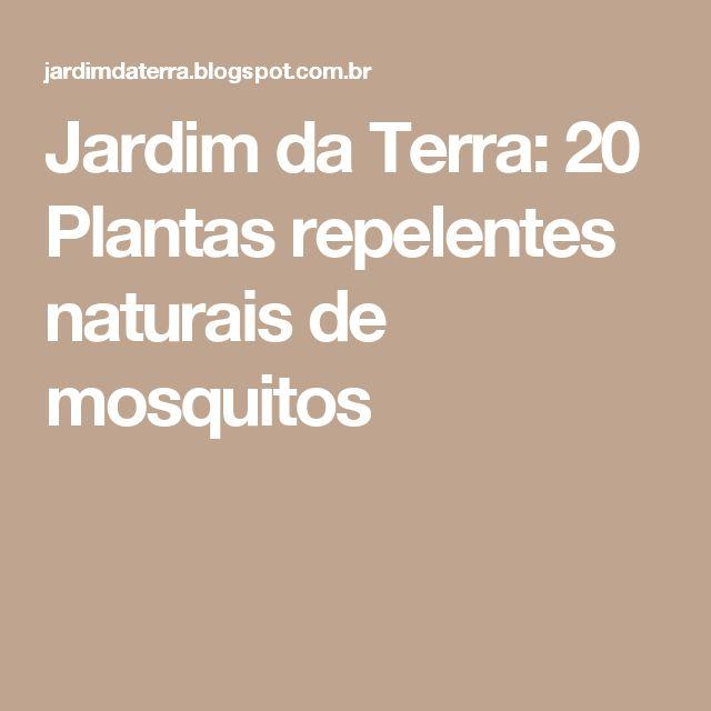 Jardim da Terra: 20 Plantas repelentes naturais de mosquitos