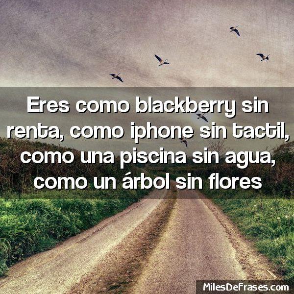 Eres como blackberry sin renta como iphone sin tactil como una piscina sin agua como un árbol sin flores