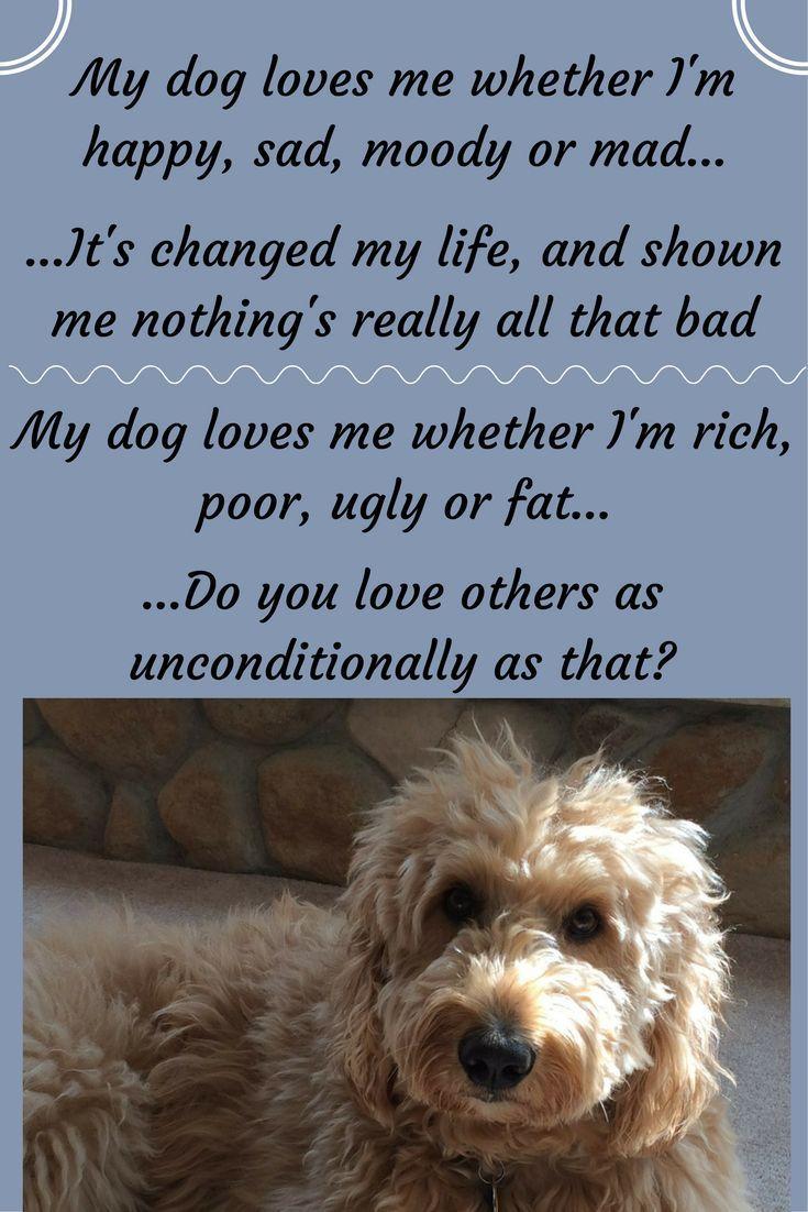 14 best Beautiful Dog Poems & Writings images on Pinterest | Dog cat ...