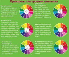 цветовой круг сочетание цветов в фотографии: 18 тыс изображений найдено в Яндекс.Картинках
