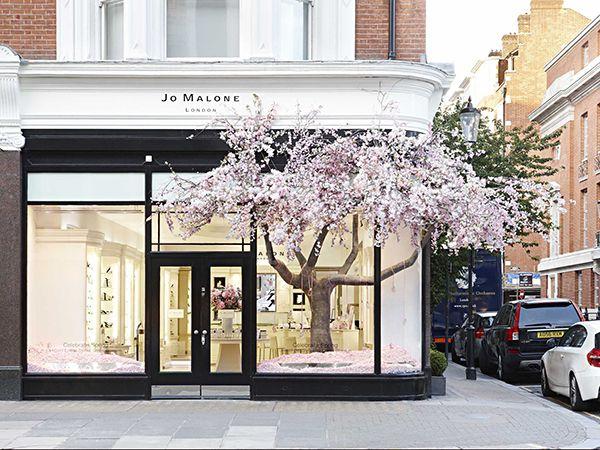 Jo Malone London, Sloane Street Boutique-le tronc est à l'intérieur… les fleurs à l'extérieur