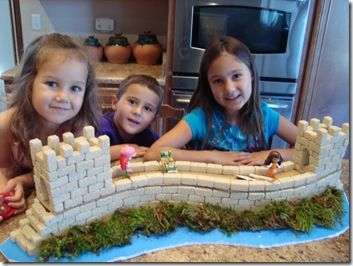 Craft the Great Wall of China! Wow!: Fair Projects, Great Wall Of China Projects, Homeschool Projects Crafts, China Week, Styrofoam Brick, Great Wall Of China Crafts, Wall Crafts, Bricks, Rice Krispie Treats