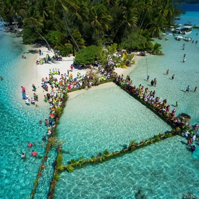 South Pacific Beaches: Best 328 Tahiti Ideas On Pinterest