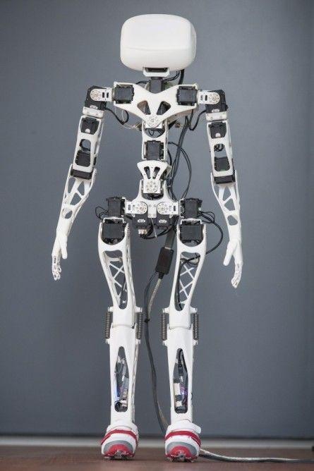 The assembled Poppy robot (Photo: Inria / H. Raguet)