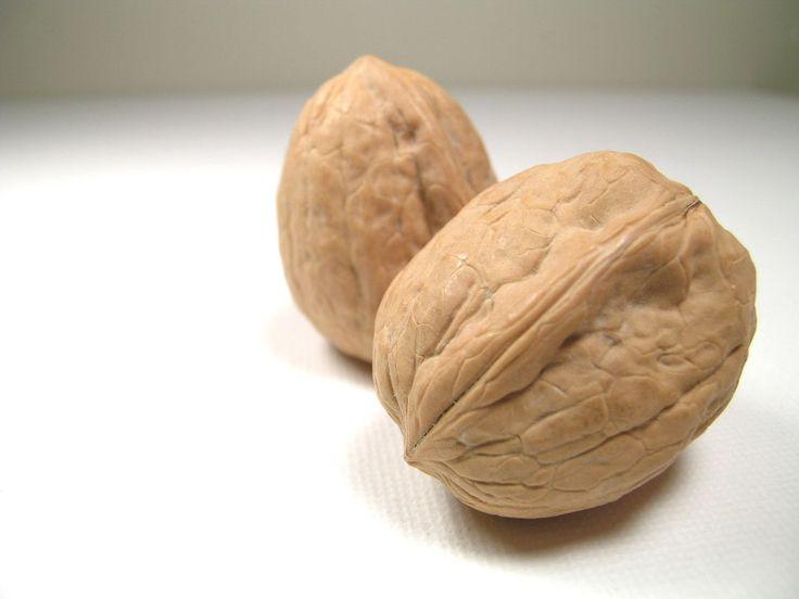 Harvesting English Walnuts - How to Harvest English Walnuts