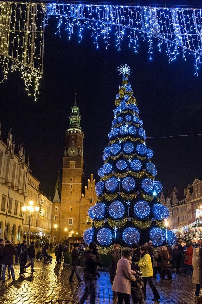 A 20-meter-high (65 feet) Christmas tree stands in Market Square in Wroclaw, Poland, on Dec. 8.